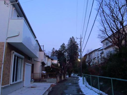 20130122・雪が降る05
