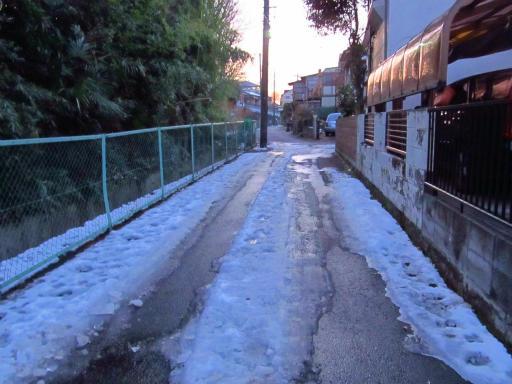 20130122・雪が降る04