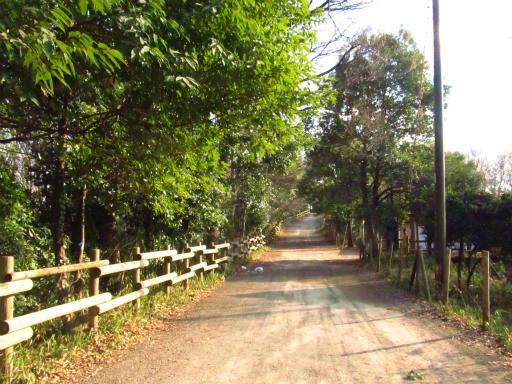 20130202・近所散歩2-06