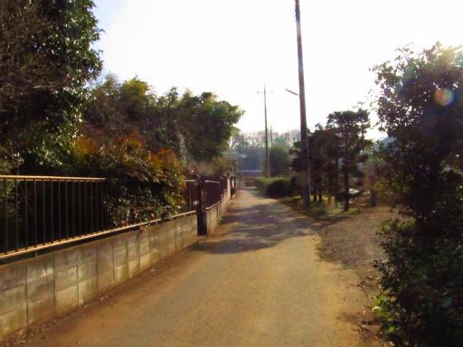 20130202・近所散歩2-04