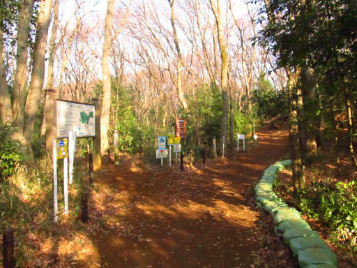 20130202・近所散歩2-07