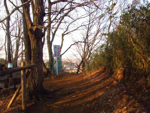 20130202・近所散歩2-13