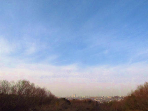 20130202・近所散歩空2-04