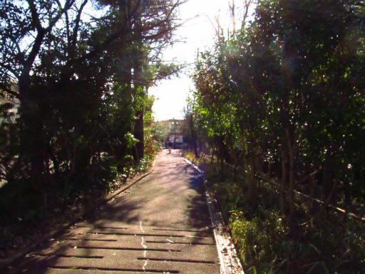 20120209・狭山湖散歩1-01