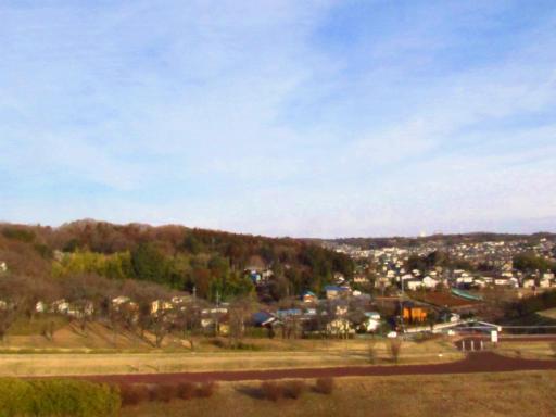 20120209・狭山湖散歩1-15