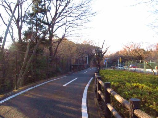 20120209・狭山湖散歩1-23