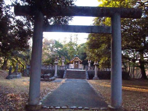 20120209・狭山湖散歩2-04