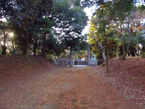 20120209・狭山湖散歩2-01