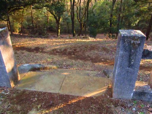 20120209・狭山湖散歩2-08
