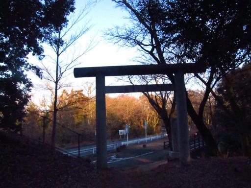 20120209・狭山湖散歩2-23