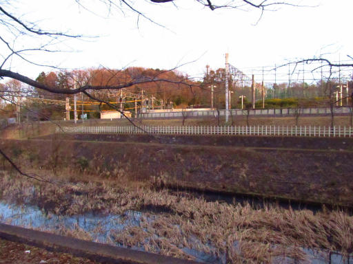 20120209・狭山湖散歩3-08