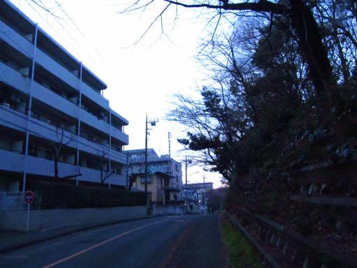 20120209・狭山湖散歩3-17