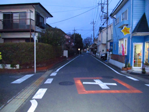 20120209・狭山湖散歩3-23