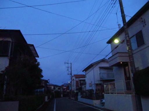 20120209・狭山湖散歩3-22