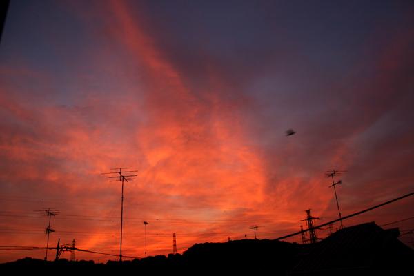 20100607朝焼け20D-1