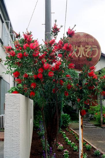 20100531町田1