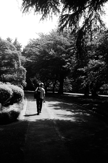 20100615新宿御苑ro9