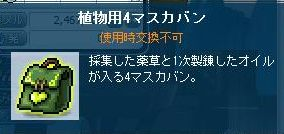 Maple111108_231035.jpg