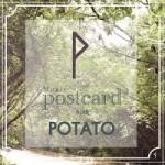 POSTCARD-Potato-โปเตโต้-150x150