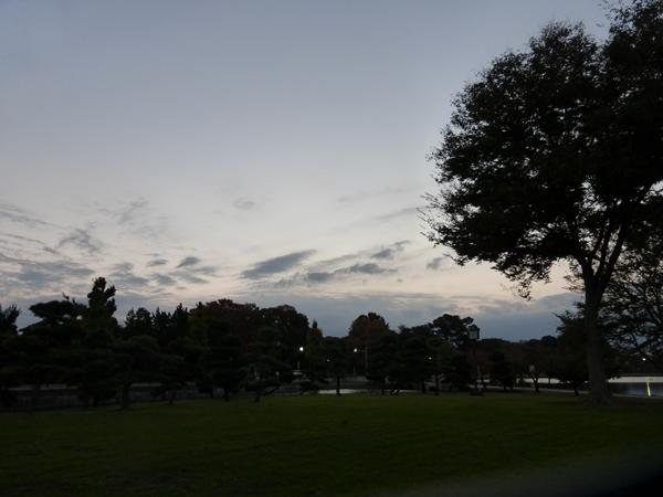 003-11084.jpg