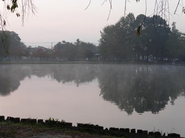 006-10254.jpg