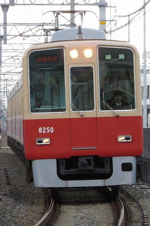 IMG_9686.jpg