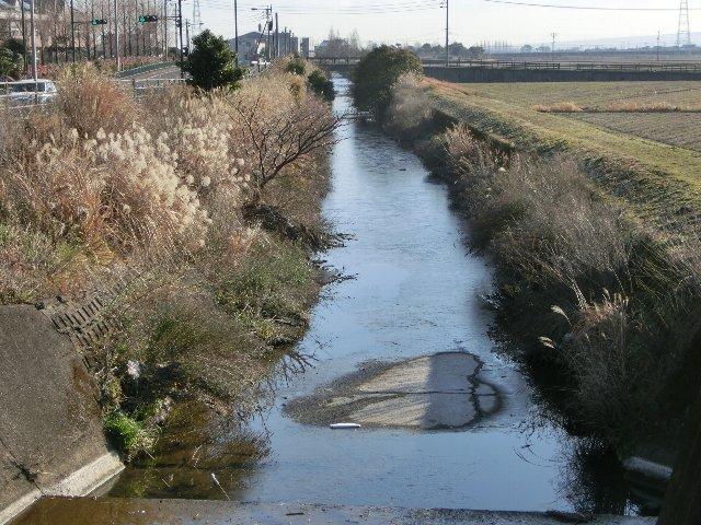 凍ってるよ川