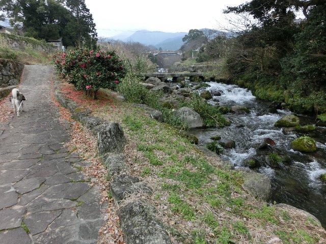 橘神社遊歩道