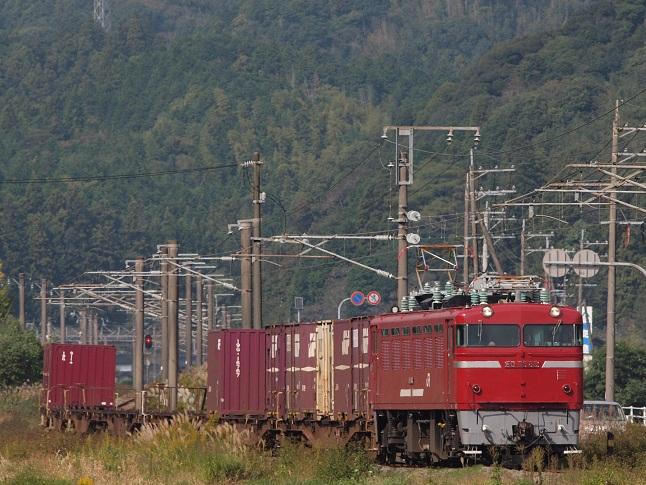 PB127657.jpg