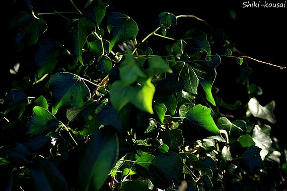 緑・グラデーション