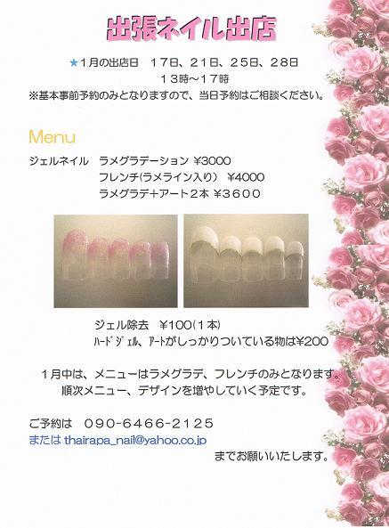 CCI20110118_00000.jpg