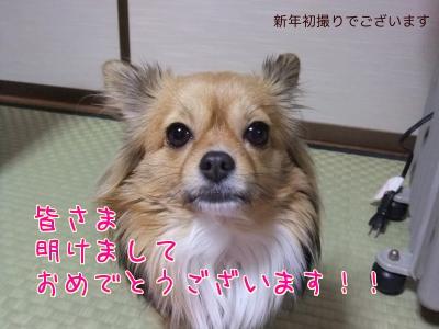 あけおめ☆