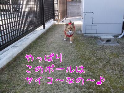 サイコ~♪