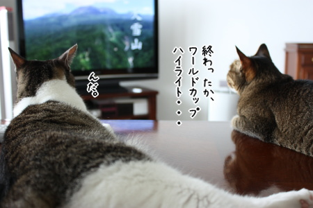 ちび&アイMAX