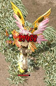 6_20101207103555.jpg