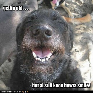 funny-dog-pictures-old-smile.jpg