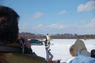20110214-12.jpg