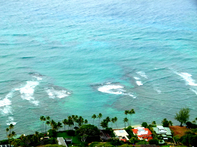 0103DIAMOND HEAD (6)