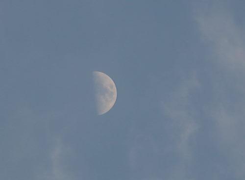 お月さま619