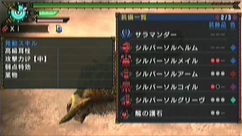 狩舞踏×双剣(14分28秒)装備