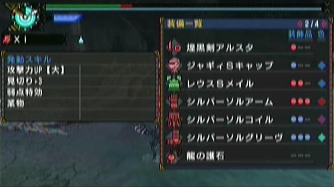 飛竜走×ガチ片手(12分19秒)装備