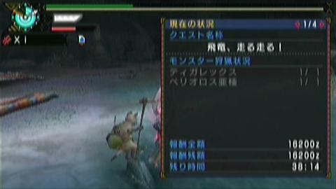 飛竜走×ガチ双剣(11分46秒)