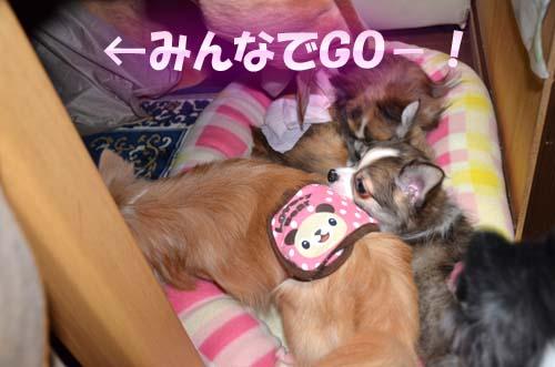 1-8_20111103092754.jpg