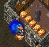 かぼちゃさん達