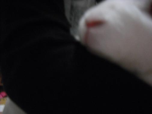 006_20111103073357.jpg