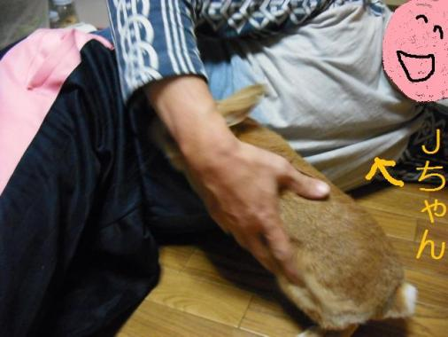 009_20111108073211.jpg