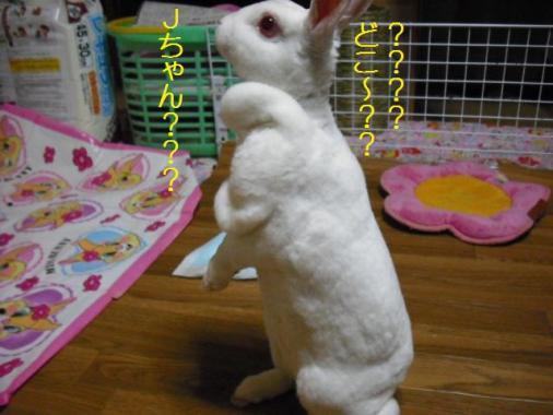 042_20111202093137.jpg
