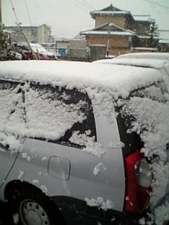 052_20110215075934.jpg