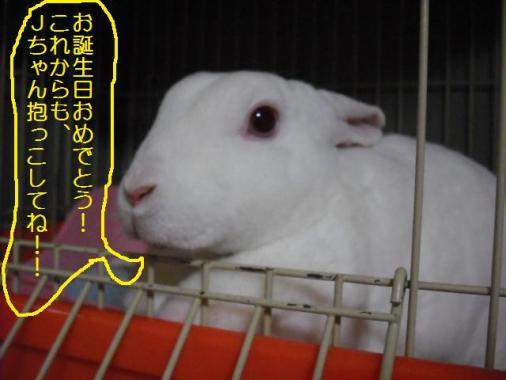 060_20111028105435.jpg