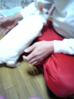 073_20110210091846.jpg